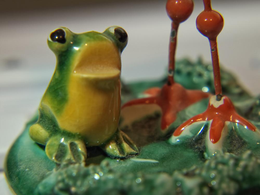 23-Austrian-Frog