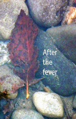 fever-cover